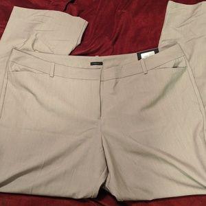 22 women's dress pants